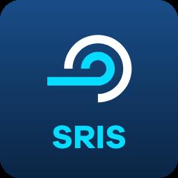 smart-RIS